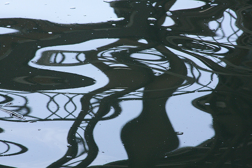 """Shadows, Burnside Bridge"" (photo by Flickr user brx0)"