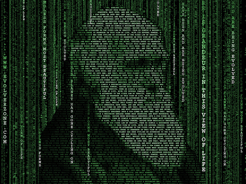 """darwin matrix_1600"" image by Flickr user Graham Steel"
