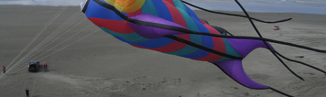 """Fish Kite"" image by Flickr user MNkiteman"