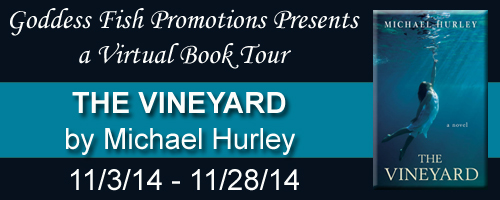 VBT The Vineyard Tour Banner copy