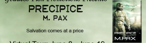 Precipice: An author interview with M. Pax