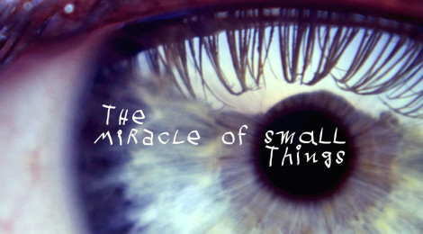 The Miracle of Small Things: An interview with Guilie Castillo Oriard